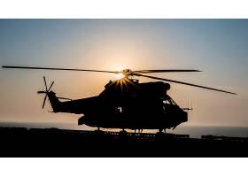 军队,航空航天,SA,330,美洲狮,军队,直升机,壁纸,(1)
