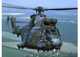 军队,航空航天,SA,330,美洲狮,军队,直升机,壁纸,