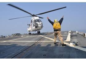 军队,航空航天,SA,330,美洲狮,军队,直升机,直升飞机,航空航天,美
