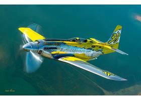 军队,北方,美国的,P-51,野马,军队,飞机,飞机,壁纸,(1)