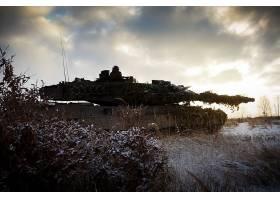 军队,豹,2,坦克,壁纸,(11)