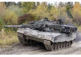 军队,豹,2,坦克,坦克,壁纸,(11)