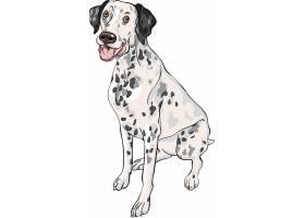 斑点宠物狗设计