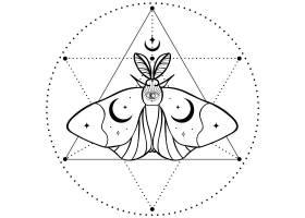飞蛾星阵主题装饰图案设计