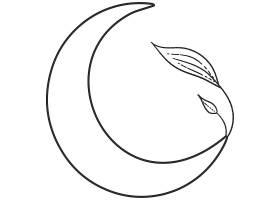 月亮叶子主题装饰图案设计