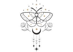 飞蛾花卉月亮主题装饰图案设计