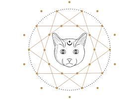 猫咪星阵主题装饰图案设计