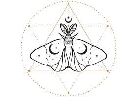 飞蛾六角星阵主题装饰图案设计
