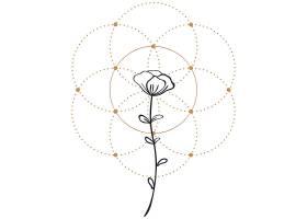 花卉主题装饰图案设计