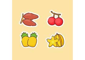 菠萝樱桃杨桃主题插画设计