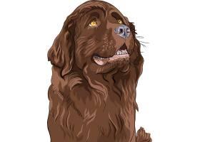 棕色宠物狗设计