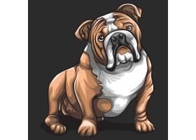 卡通巴哥犬设计