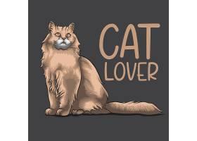 宠物猫设计