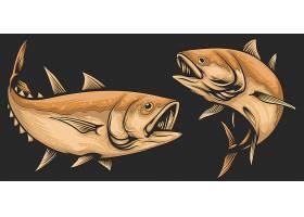 卡通食人鱼设计