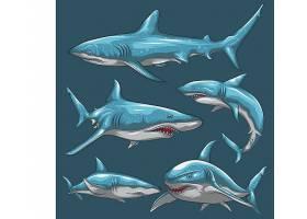 蓝色鲨鱼设计