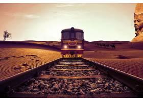 操纵,火车,铁路,沙漠,骆驼,运动的,壁纸,
