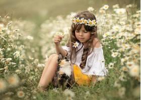 儿童,女孩,小的,女孩,黑发女人,花冠,花,白色,花,夏天,猫,宠物,壁
