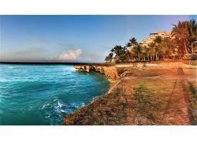 海洋,地球,海,蓝色,古巴,海岸,岩石,手掌,树,壁纸,