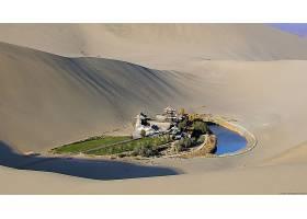 绿洲,戈壁,沙漠,壁纸,