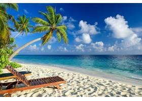 海滩,海,热带,手掌,树,沙,地平线,天空,壁纸,