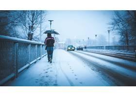 冬天的,桥梁,雪,妇女,雨伞,脚印,汽车,壁纸,