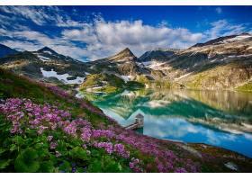 反射,自然,风景,花,植物,湖,水,山,云,风景,壁纸,