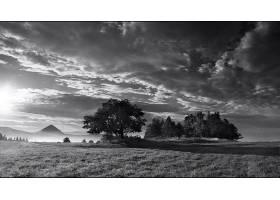 黑色,白色,风景,壁纸,(3)