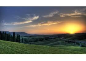 风景优美的,树,风景,壁纸,