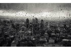雨点,壁纸,(51)