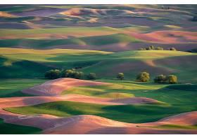 托斯卡纳区,意大利,自然,风景,小山,领域,壁纸,
