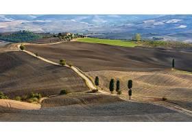 托斯卡纳区,意大利,领域,泥土,路,风景,壁纸,