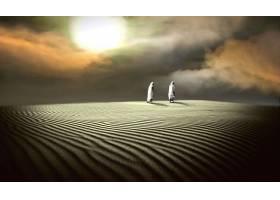 人,地球,沙漠,雾,太阳,男人,壁纸,