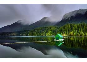 湖,湖,Capilano,湖,加拿大,温哥华,房子,森林,自然,风景,树,壁纸,