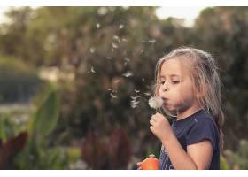 儿童,深度,关于,领域,女孩,蒲公英,白皙的,小的,女孩,壁纸,