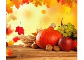 仍然,生活,收获,葡萄,螺母,叶子,苹果,南瓜,水果,秋天,壁纸,