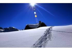 冬天的,雪,小屋,房子,自然,白色,快活的,脚印,壁纸,