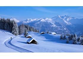 冬天的,雪,自然,风景,白色,农村,山,壁纸,