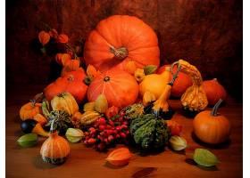 仍然,生活,秋天,南瓜,葫芦,叶子,壁纸,