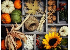 仍然,生活,秋天,收获,向日葵,螺母,南瓜,壁纸,