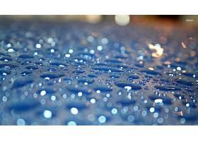 雨点,壁纸,(59)