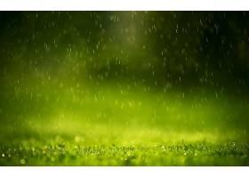 雨,壁纸,(61)