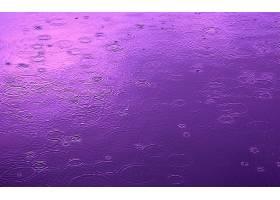 雨点,壁纸,(17)