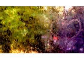 雨点,壁纸,(22)