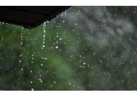 雨点,壁纸,(32)