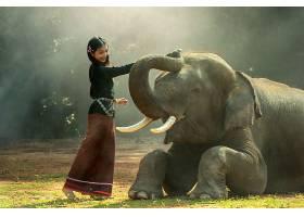 人,妇女,大象,动物,亚洲的,长的,头发,柬埔寨,壁纸,
