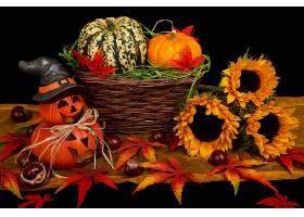仍然,生活,秋天,南瓜,向日葵,葫芦,篮子,壁纸,