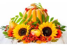 仍然,生活,秋天,向日葵,南瓜,壁纸,