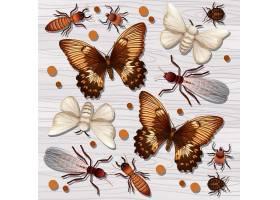 蝴蝶飞蛾蚂蚁蝼蚁螨虫主题插画设计