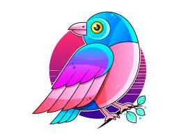 鹦鹉鸟类主题插画设计