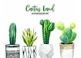仙人掌绿色天然多肉植物花卉叶子盆栽矢量装饰插画设计